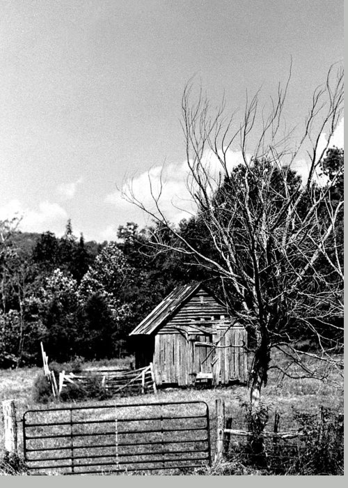 Greeting Card featuring the photograph Oldshack by Curtis J Neeley Jr