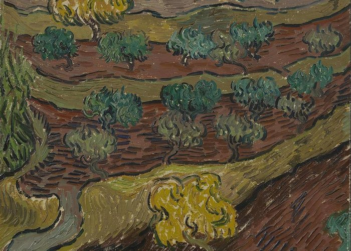 Art Greeting Card featuring the painting Olive Trees On A Hillside Saint Remy De Provence November  December 1889 Vincent Van Gogh 1853 by Artistic Panda