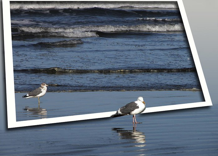 Oregon Greeting Card featuring the photograph On An Oregon Beach by Rich Stedman