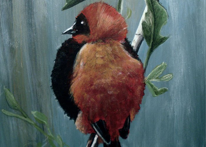 Red Bishop Bird Greeting Card featuring the painting On Safari - Red Biship by Carrie Jackson