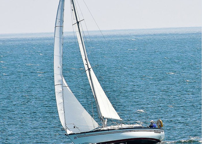 Sailboat Greeting Card featuring the photograph On The Bay by Liz Santie