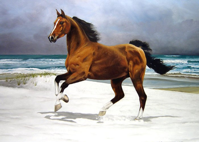 Horse Greeting Card featuring the painting On The Beach by Marc Stewart