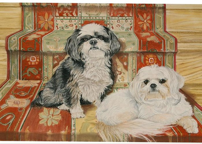 Shih Tzu Greeting Card featuring the pastel On The Stairs by Barbara Keel