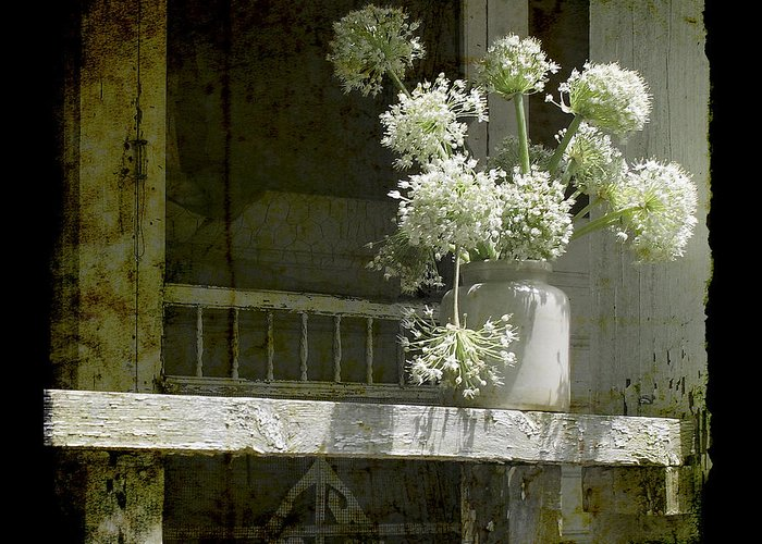 Onion Greeting Card featuring the photograph Onion Blooms by Sari Sauls