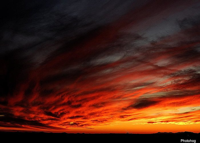 Sunset Greeting Card featuring the photograph Only In The Desert by Adam Jones