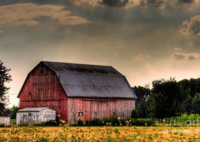 Barn Greeting Card featuring the photograph Ontario Barn In The Sun by Tim Wilson