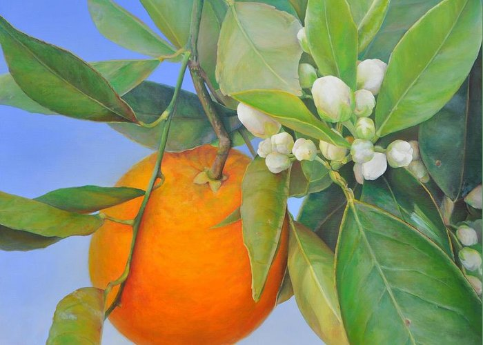 Floral Painting Greeting Card featuring the painting Orange en Bouton by Muriel Dolemieux