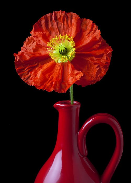 Orange Iceland Poppy Red Pitcher Greeting Card featuring the photograph Orange Iceland Poppy In Red Pitcher by Garry Gay