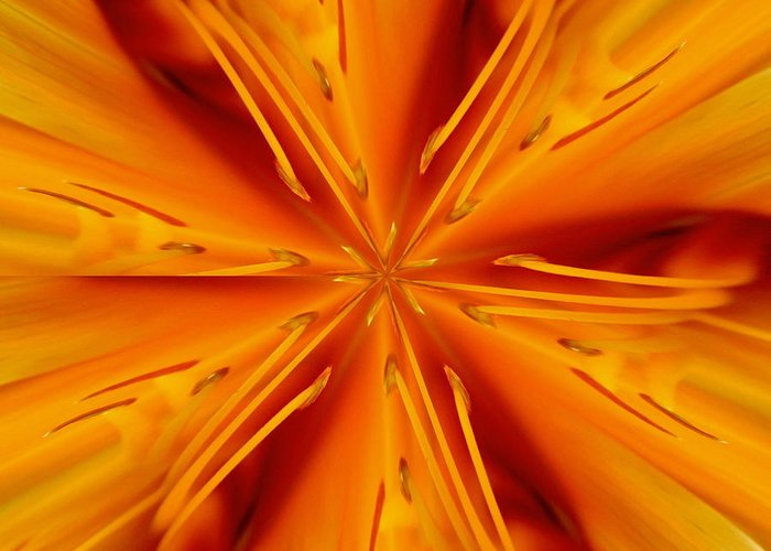 Fractal Greeting Card featuring the photograph Orange Marmalade by David Dunham