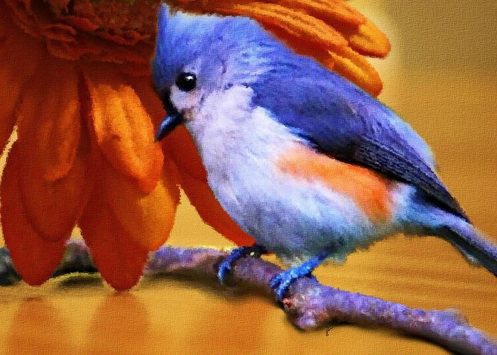 Titmouse Greeting Cards
