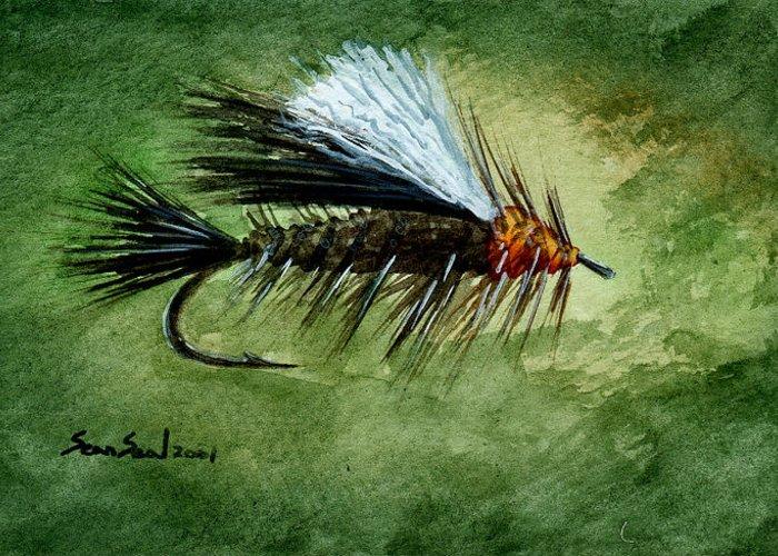 Fishing Fly Greeting Card featuring the painting Orange Stimulator by Sean Seal