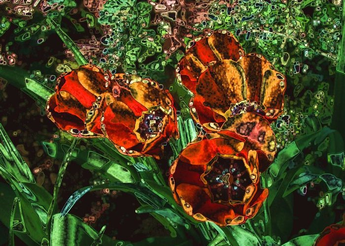 Photo Greeting Card featuring the photograph Orange Tulip Chrome by Dave Martsolf