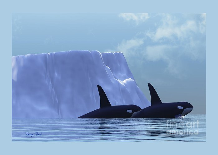 Killer Whale Greeting Card featuring the painting Orca by Corey Ford