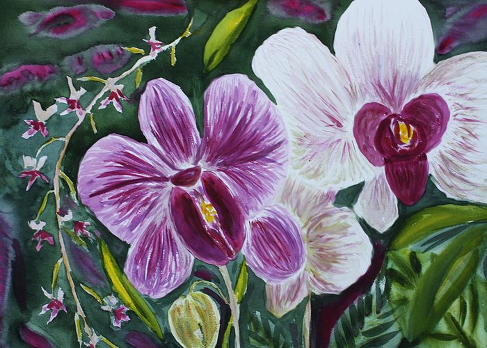 Orchid Greeting Card featuring the painting Orchid At Aos 2010 by Donna Walsh
