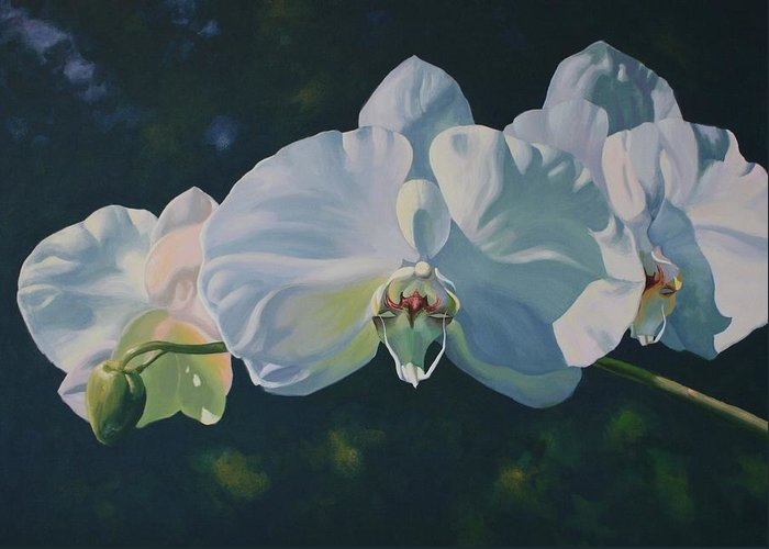 Acrylic On Canvas Greeting Card featuring the painting Orchid Song by Michael Vires