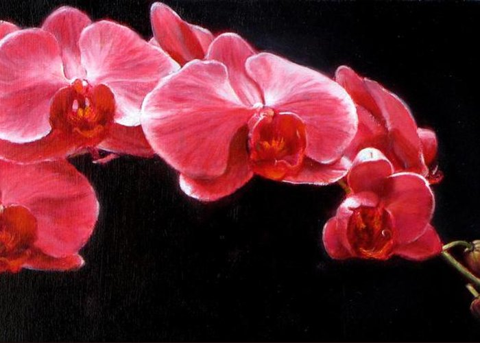 Floral Greeting Card featuring the painting Orchids by Takayuki Harada
