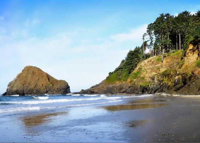 Oregon Greeting Card featuring the photograph Oregon - Beach Life by Image Takers Photography LLC - Laura Morgan
