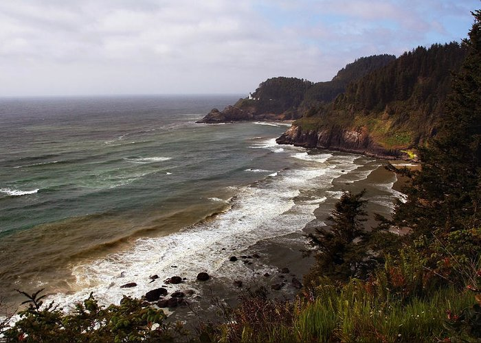 Oregon Greeting Card featuring the photograph Oregon Coast by Joanne Coyle