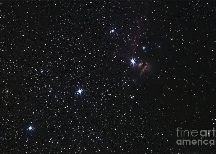 Flame Nebula Greeting Card featuring the photograph Orions Belt, Horsehead Nebula And Flame by Luis Argerich