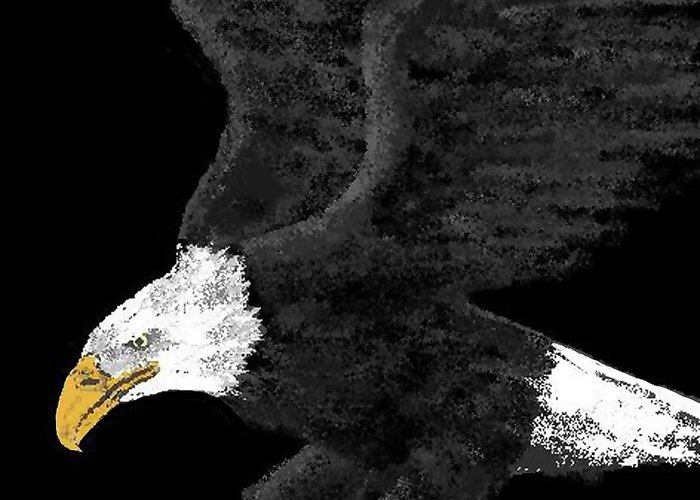 Eagles Greeting Card featuring the digital art Out Of The Night by Carole Boyd