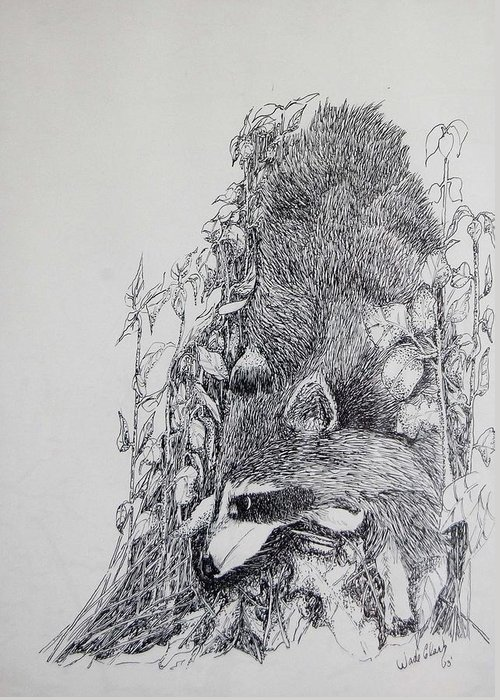 Animals Greeting Card featuring the drawing Out Of The Woods by Wade Clark