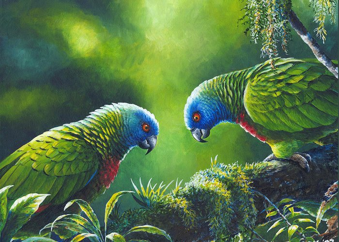 Chris Cox Greeting Card featuring the painting Out On A Limb - St. Lucia Parrots by Christopher Cox