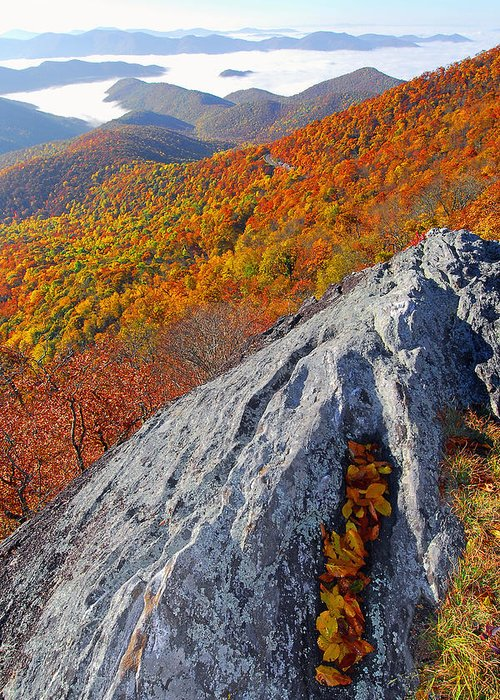Greeting Card featuring the photograph Outcrop Above Parkway by Alan Lenk