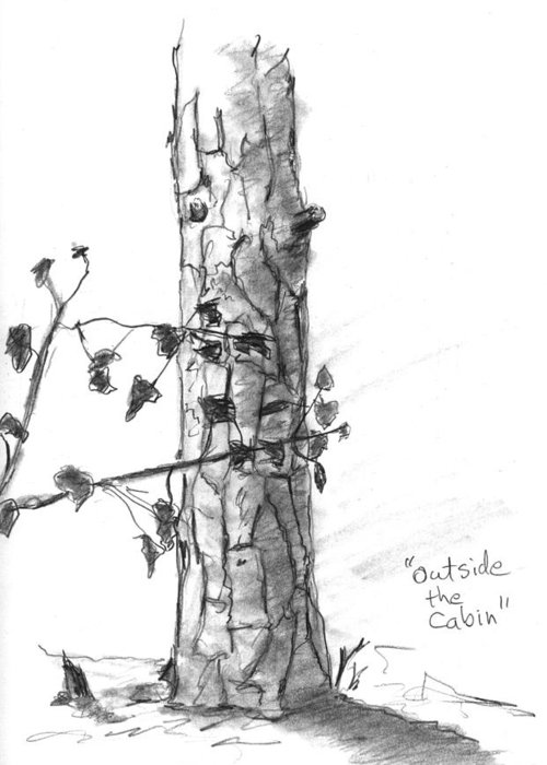 Tree Greeting Card featuring the drawing Outside The Cabin by Kevin Callahan