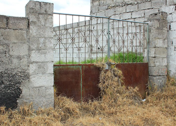 Gate Greeting Card featuring the photograph Overgrown Rusted Gate by Robert Hamm
