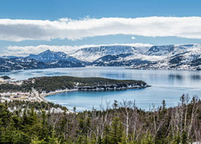 Norris Point Greeting Card featuring the photograph Overlooking Norris Point, Nl by Mike Organ