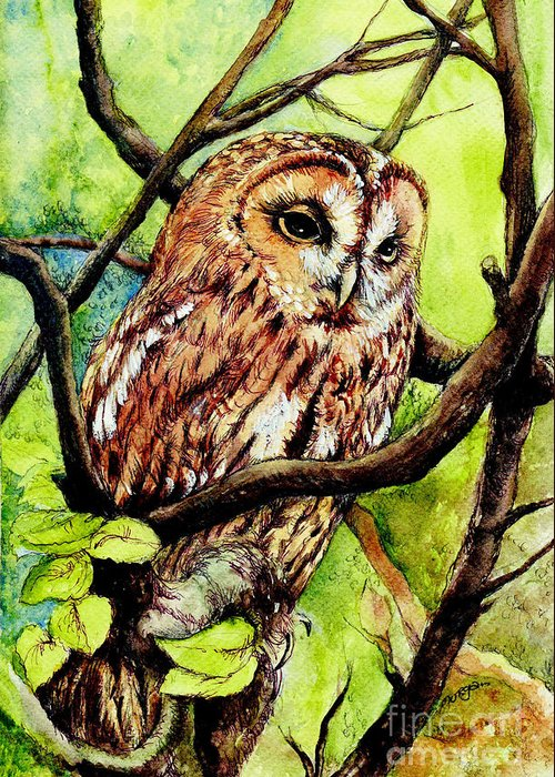 Bird Greeting Card featuring the painting Owl From Butterfingers And Secrets by Morgan Fitzsimons