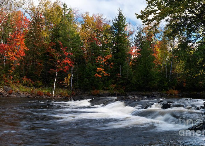 River Greeting Card featuring the photograph Oxtongue River Ontario Autumn Scenery by Oleksiy Maksymenko