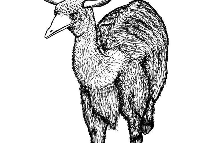 Drawing Greeting Card featuring the drawing Oxtrich by Karl Addison