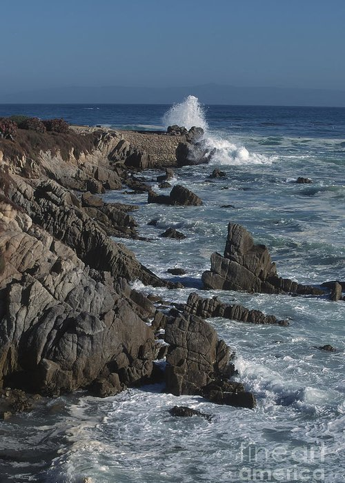 California Greeting Card featuring the photograph Pacific Grove Seascape by Stan and Anne Foster