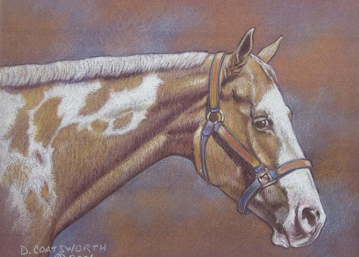 Greeting Card featuring the painting Paint Horse by Dorothy Coatsworth