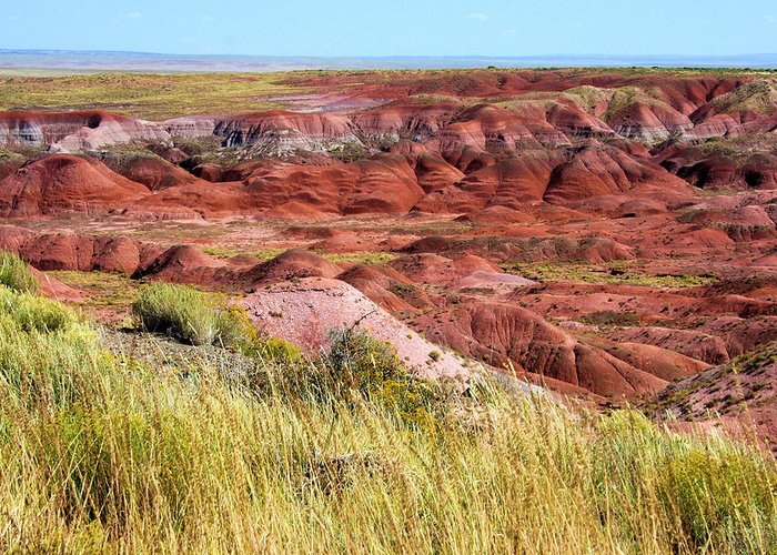 Photography Greeting Card featuring the photograph Painted Desert 0242 by Sharon Broucek