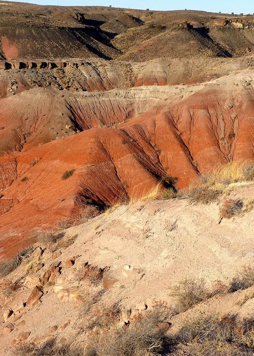 Photograph On Paper Greeting Card featuring the photograph Painted Desert 3 by Patricia Bigelow