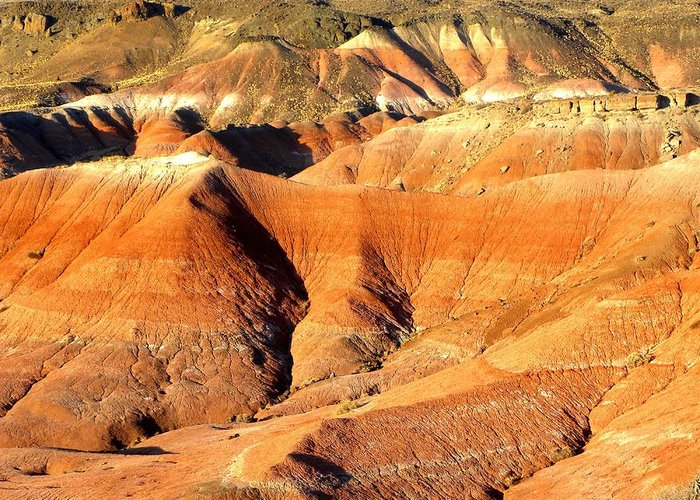 Photograph On Paper Greeting Card featuring the photograph Painted Desert 4 by Patricia Bigelow