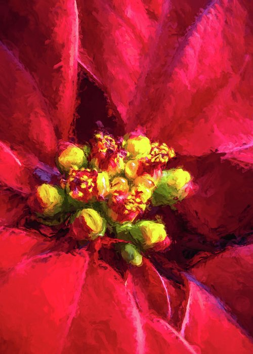 Poinsettia Greeting Card featuring the photograph Painted Poinsettia by Diane Moore