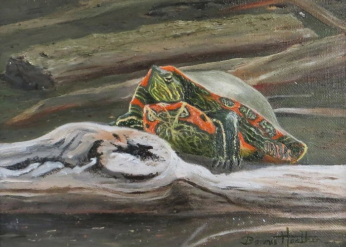 Turtle Greeting Card featuring the painting Painted Turtle by Bonnie Heather
