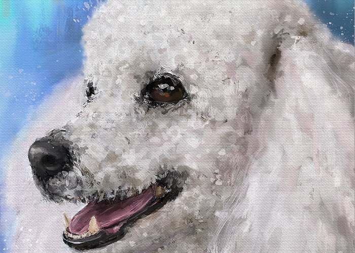Poodle Greeting Card featuring the digital art Painting Of A White Fluffy Poodle Smiling by Idan Badishi