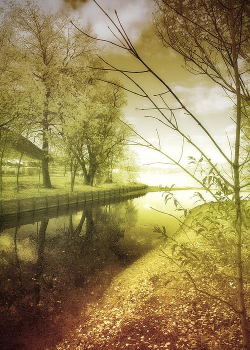River Greeting Card featuring the photograph Pale Reflections Of Life by Tara Turner