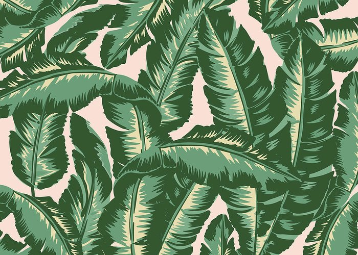 Tropical Leaves Greeting Cards