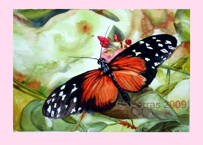Watercolors Original Painting Lightfast Butterfly Red Greeting Card featuring the painting Papillon I by Rose Sciberras