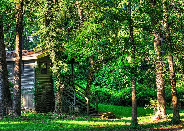 Cabin Greeting Card featuring the photograph Park Chalet by Ester Rogers