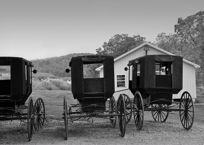 Amish Greeting Card featuring the photograph Parked Buggies by Fred Lassmann