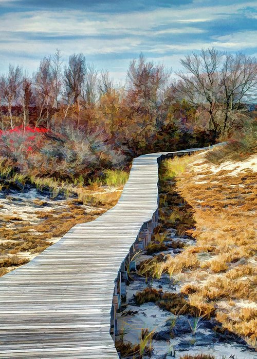New England Greeting Card featuring the photograph Parker River Nwr Boardwalk by Dave Thompsen