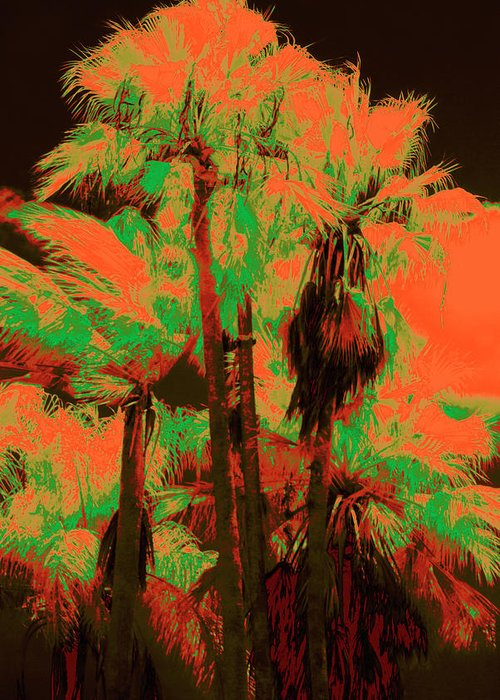 Palms Greeting Card featuring the photograph Parking Lot Palms 1 6 by Gary Bartoloni