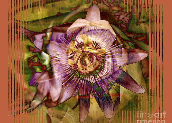 Flower Greeting Card featuring the photograph Passion by Chuck Brittenham