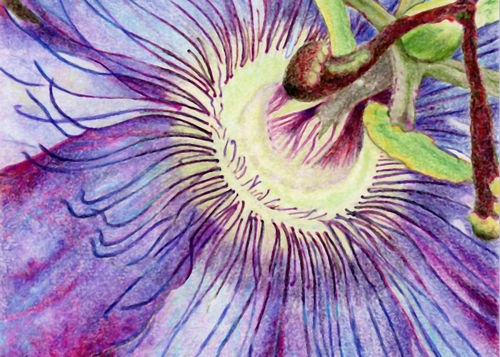 Flower Greeting Card featuring the painting Passion Flower by Robynne Hardison